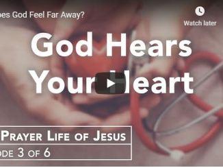 Rabbi Schneider Sermon - Does God Feel Far Away - May 28 2020