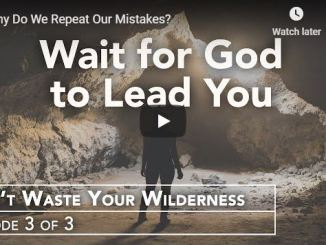 Rabbi Schneider Sermon - Why Do We Repeat Our Mistakes