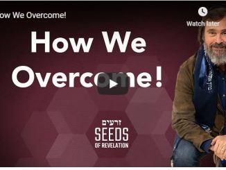 Rabbi Schneider Sermon - How We Overcome - June 2020