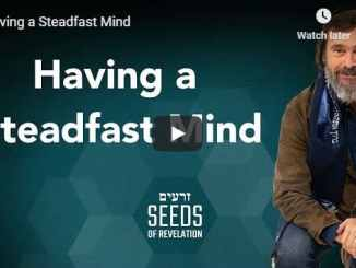 Rabbi Schneider Sermon - Having a Steadfast Mind - August 2020