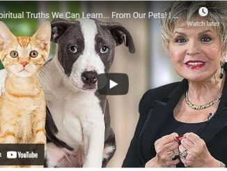 Dr. Clarice Fluitt - Spiritual Truths We Can Learn ... From Our Pets