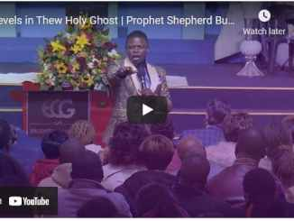 Prophet Shepherd Bushiri Sermons - Levels in The Holy Ghost