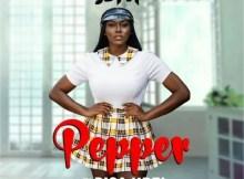 Sefa ft. Bisa Kdei - Pepper (prod. by Danny Beatz) 17 Download