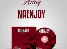 Aslay - NaEnjoy 14 Download