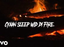 Chronic Law - Fire 1 Download