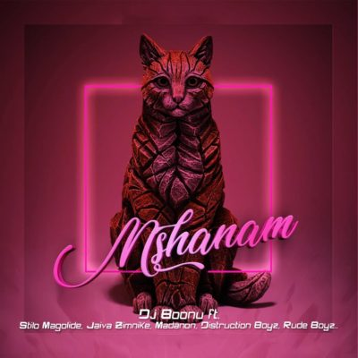 DJ Boonu - Mshanam Ft. Distruction Boyz, Madanon, Rude Boyz, Stilo Magolide & Jaiva Zimnike Mp3 Audio Download