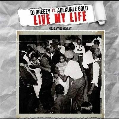 LYRICS; Live My Life - DJ Breezy & Adekunle Gold 1 Download