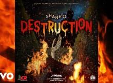 Shane O - Destruction 21 Download
