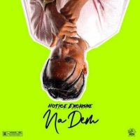 [LYRICS] Hotice Exclusive - Na Dem Lyrics