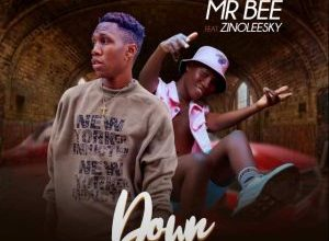 Mr Bee ft Zinoleesky Down