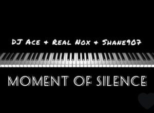 Photo of DJ Ace Ft. Real Nox & Shane907 – Moment of Silence