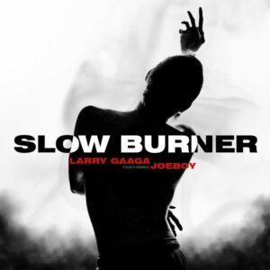 Larry Gaaga ft. Joeboy Slow Burner mp3