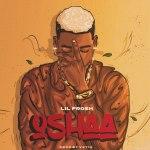 MP3: Lil Frosh – Oshaa