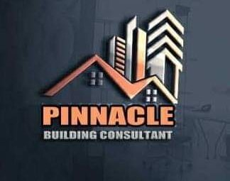 All You Need To Know And Reasons You Should Work With Pinnacle Building Consultant