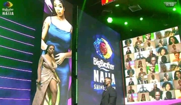 BBNaija: Fans Worried Over The Fallen Boobs Of The First Female Housemate Of Season 6