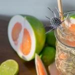 Winter Citrus Tequila Highball