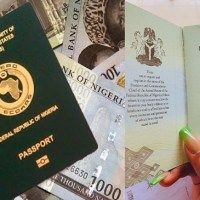 Cost Of International Passports In Nigeria, Types & Application