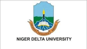 Niger delta university - petrochemical engineering