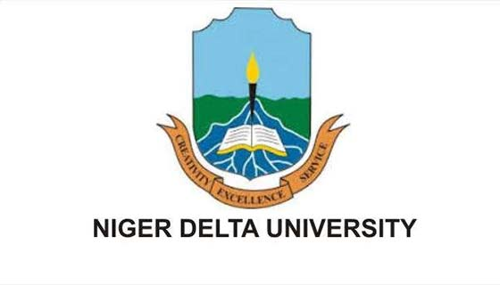 ndu 2018/2019 postgraduate admission form