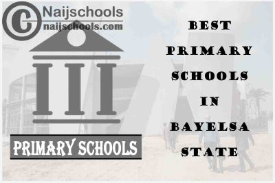 11 of the Best Primary Schools to Attend in Bayelsa State | No. 3's the Best