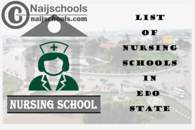 Complete List of Accredited Nursing Schools in Edo State Nigeria