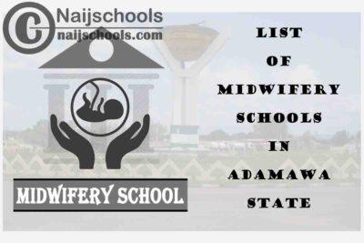 Full List of Accredited Midwifery Schools in Adamawa State Nigeria