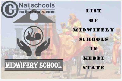 Full List of Accredited Midwifery Schools in Kebbi State Nigeria