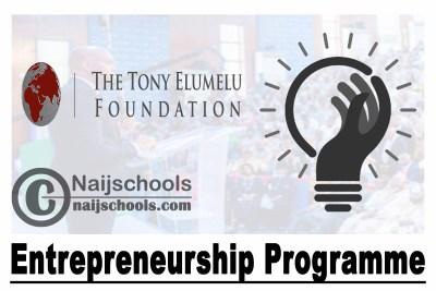 Tony Elumelu Foundation Entrepreneurship Programme 2021 For African Entrepreneurs | APPLY NOW