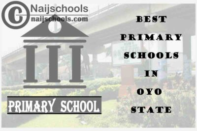 11 of the Best Primary Schools to Attend in Oyo State Nigeria | No. 7's Top-Notch