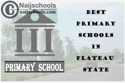 11 of the Best Primary Schools to Attend in Plateau State Nigeria   No. 7's Top-Notch