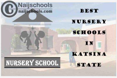 11 of the Best Nursery Schools in katsina State Nigeria | No. 7's the Best