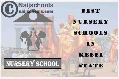 11 of the Best Nursery Schools in kebbi State Nigeria   No. 4's the Best
