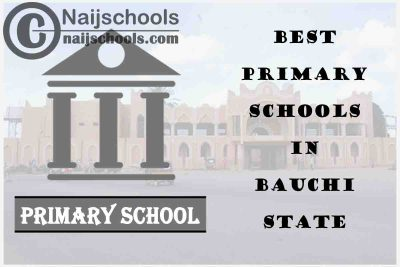 11 of the Best Primary Schools to Attend in Bauchi State | No. 4's the Best