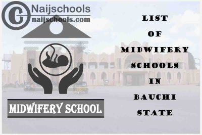 Full List of Accredited Midwifery Schools in Bauchi State Nigeria