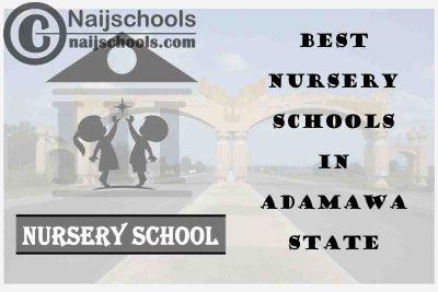 11 of the Best Nursery Schools in Adamawa State Nigeria | No. 6's the Best