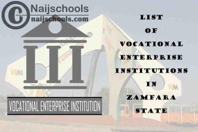 Full List of Vocational Enterprise Institutions in Zamfara State Nigeria