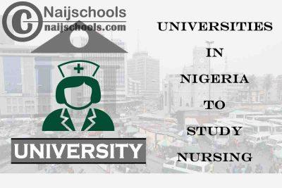 Full List of Accredited Universities in Nigeria to Study Nursing