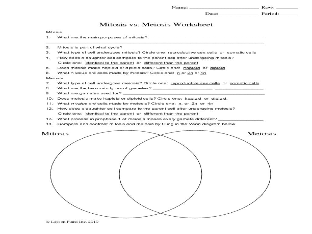 Taxonomy Worksheet Amoeba Sisters