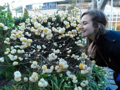 Pretty Flowers and pretty friend :3