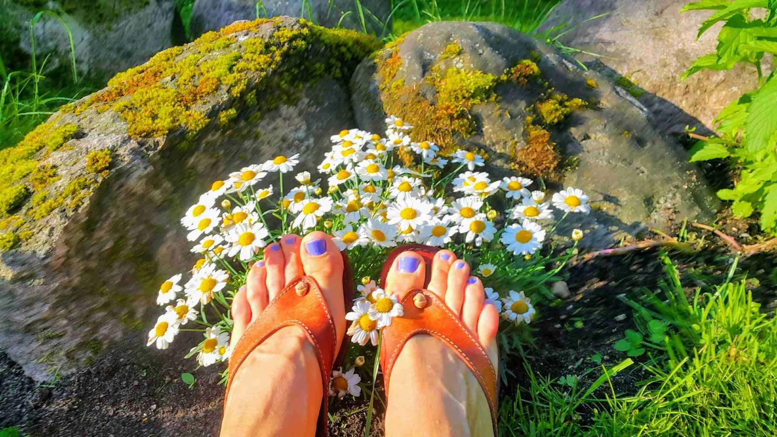 5 nippi ja nõuannet, et pidu õnnestuks ja kuidas olla peol särav