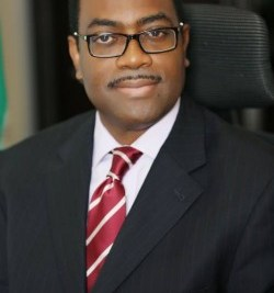 AfDB Seeks End To Illicit Financial Outflows From Nigeria