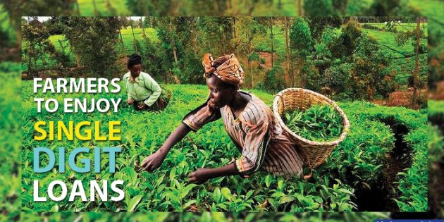 Nigerian Farmers are about to enjoy 'single digit Interest Loans'