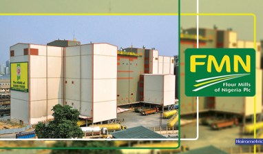 ALERT: Flour Mills Reports N10.3 billion Pre-Tax Profit (2016 9Months)