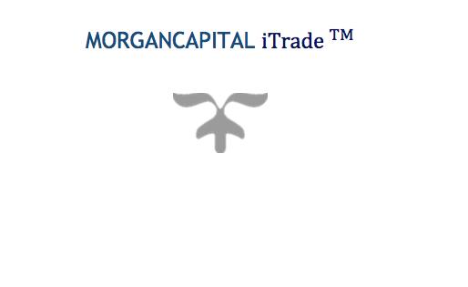 """Alert: NSE Places Morgan Capital Account On """"No Debit"""""""