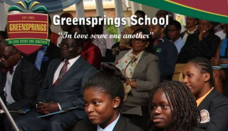Verod Capital acquires 'minority stake' in Greensprings Private School