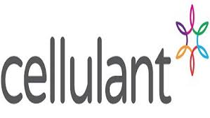 Fintech company Cellulant takes its E-wallet solution to Afghanistan