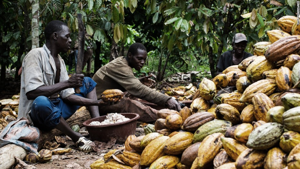 Single digit interest loans for cocoa farmers; how feasible is this?