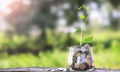 Retirement savings, Millennialshares financial managementstrategiesyou should adopt, How to save millions this year