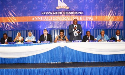 Nascon Allied Industries Plc: Increase in sale of goods boosts revenues