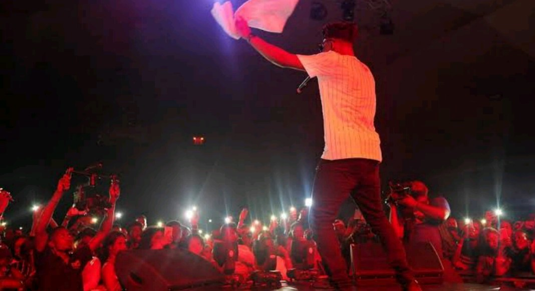 Nigerian musicians, burna boy, wizkid, davido